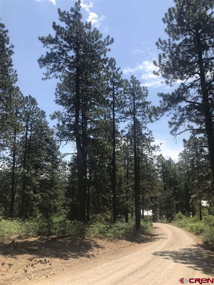 792 Sierra Drive - Photo 1