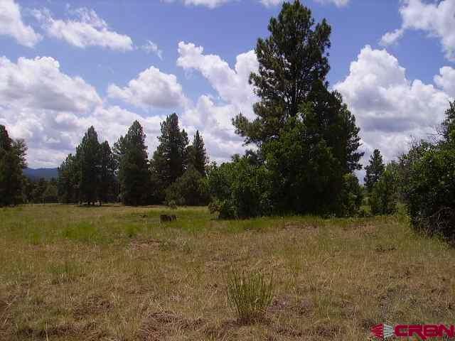 1057 E Mccabe St, Pagosa Springs, CO 81147 (MLS #748172) :: Durango Home Sales