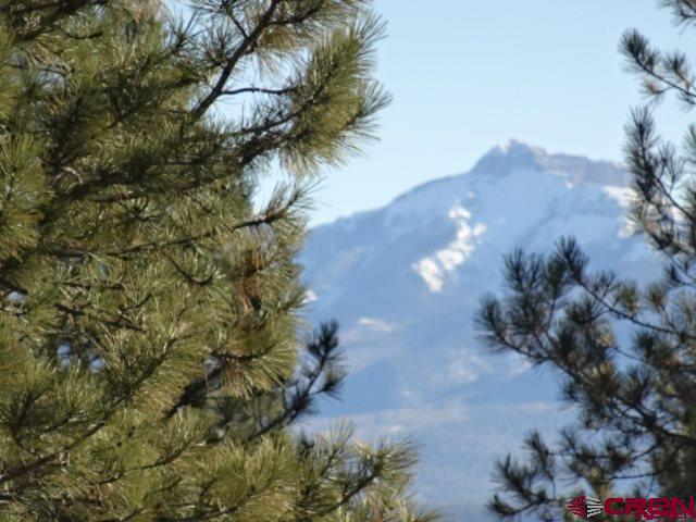 410 Buttress Avenue, Pagosa Springs, CO 81147 (MLS #748288) :: CapRock Real Estate, LLC