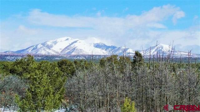 TBD De Oro Way, Hesperus, CO 81326 (MLS #748579) :: Durango Mountain Realty