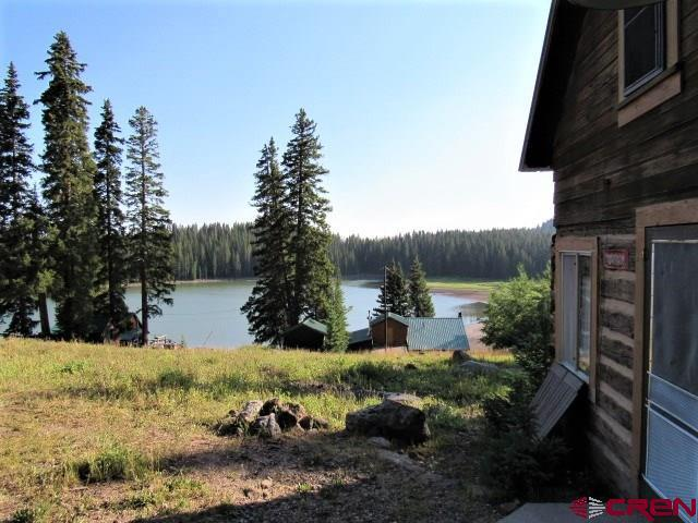 21739 Baron Lake Drive, Cedaredge, CO 81413 (MLS #749054) :: Durango Home Sales