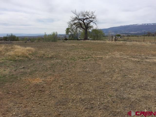 1685 S Grand Mesa Drive Vacant Land, Cedaredge, CO 81413 (MLS #749459) :: Durango Home Sales