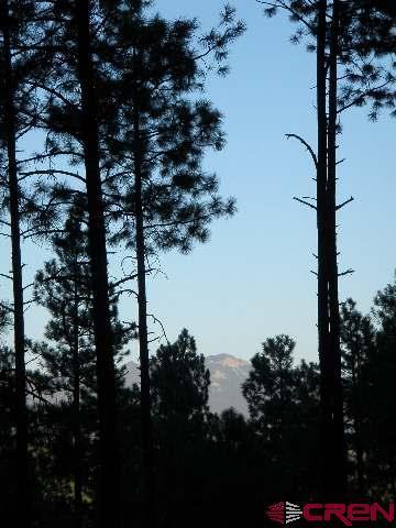 HVR_Lot25 Hidden Valley Drive, Pagosa Springs, CO 81147 (MLS #749883) :: Durango Home Sales