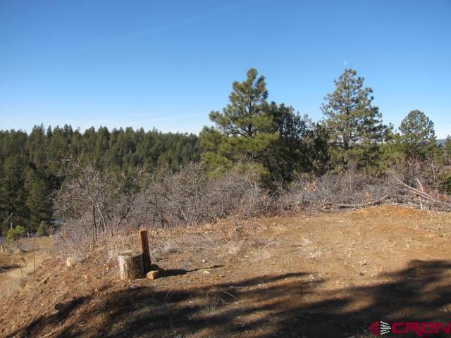 149 & 154 Engineer Point, Pagosa Springs, CO 81147 (MLS #752523) :: Durango Home Sales