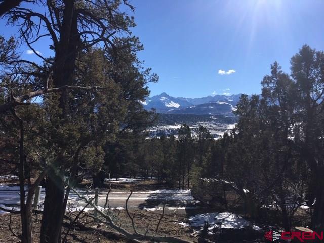 678 Catamount Drive, Ridgway, CO 81432 (MLS #752829) :: Durango Home Sales