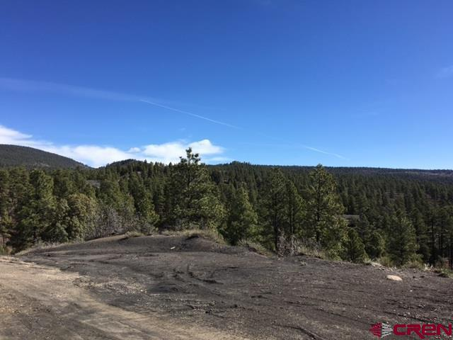 1889 Badger Road, Pagosa Springs, CO 81147 (MLS #752832) :: Durango Home Sales