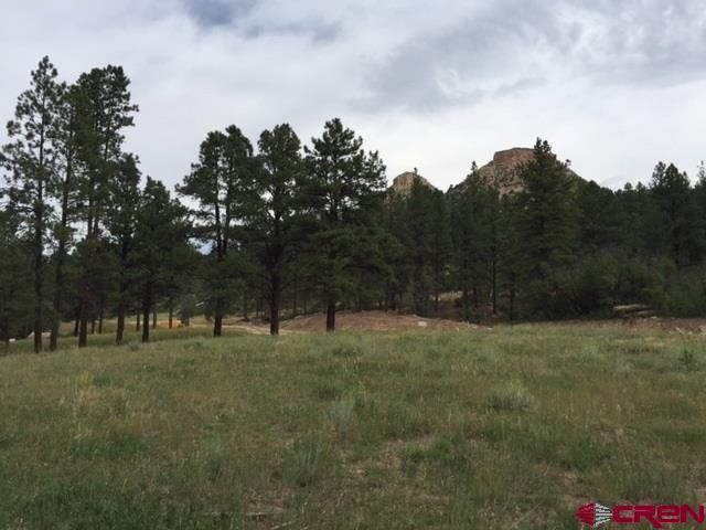 (Lot 33) 1037 Twin Buttes Avenue, Durango, CO 81301 (MLS #753594) :: Durango Mountain Realty