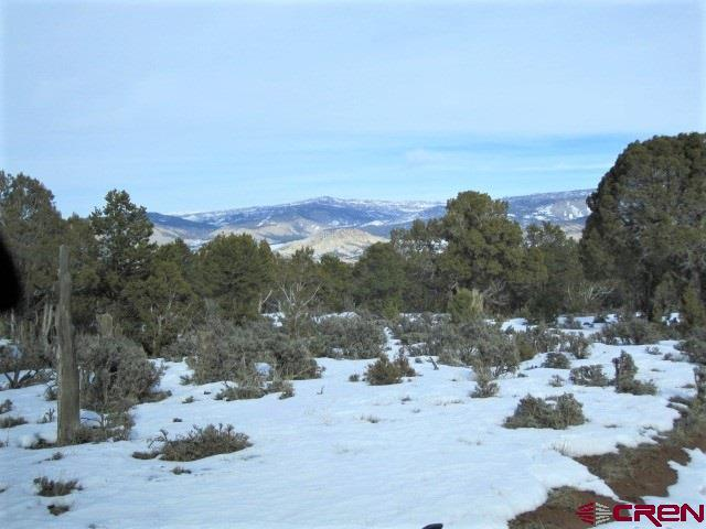 3470 County 1C Road, Montrose, CO 81403 (MLS #754153) :: Durango Home Sales