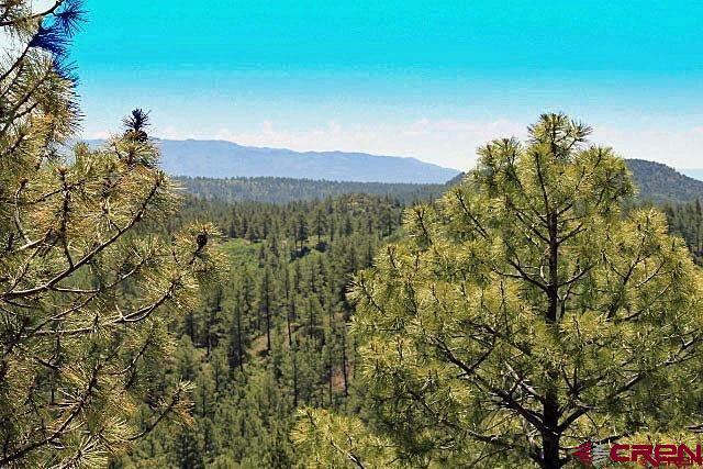 TBD Cadillac Canyon, Durango, CO 81301 (MLS #754501) :: Durango Mountain Realty