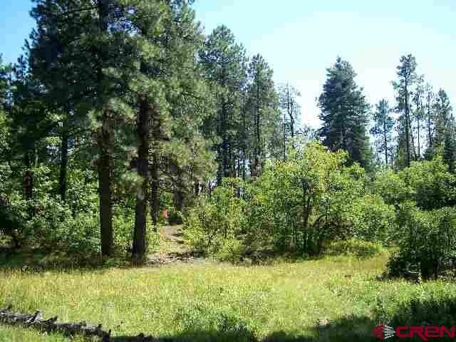 TBD Turkey Meadow Rd, Durango, CO 81301 (MLS #755556) :: Durango Mountain Realty