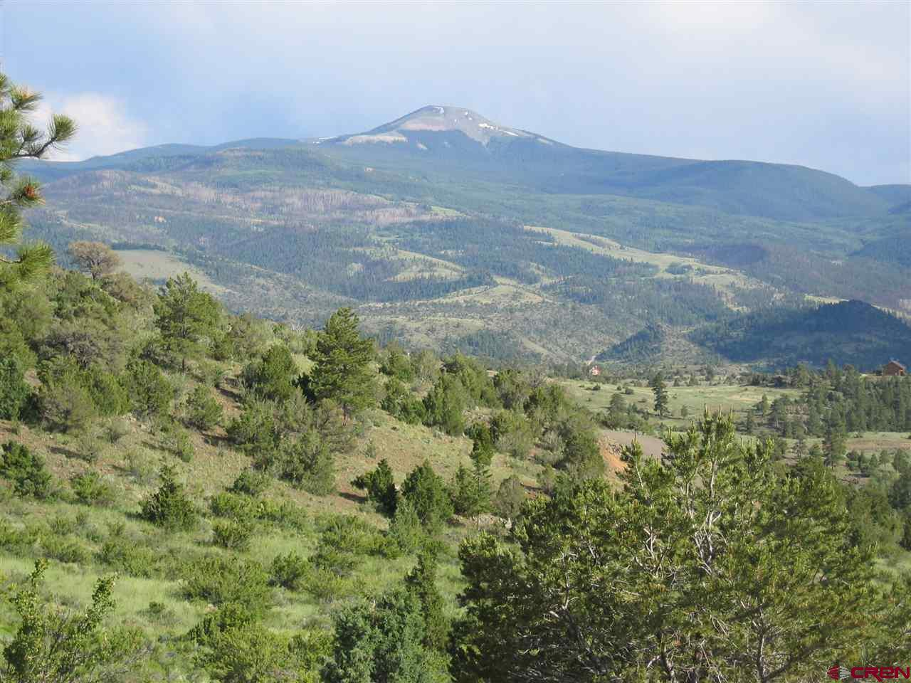 258 Black Bear Trail - Photo 1