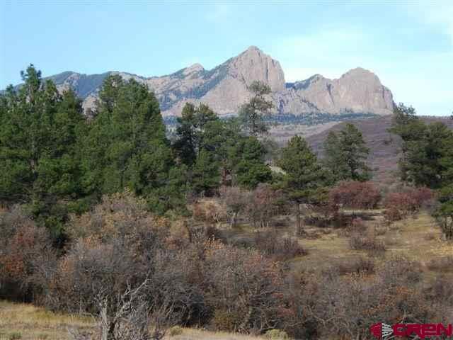 X Sleeping Bear Place, Pagosa Springs, CO 81147 (MLS #756346) :: The Dawn Howe Group | Keller Williams Colorado West Realty
