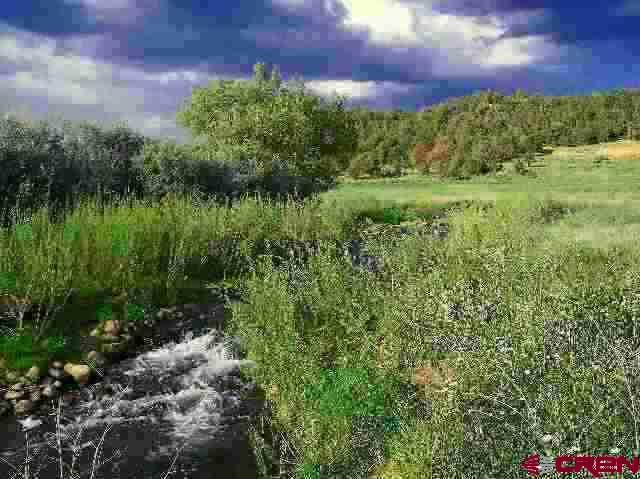 125 Cowboy Trail, Durango, CO 81303 (MLS #756378) :: Durango Mountain Realty