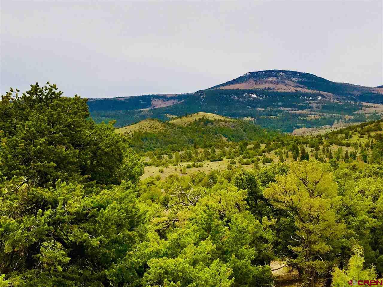 TBD Pinon Hills Road - Photo 1