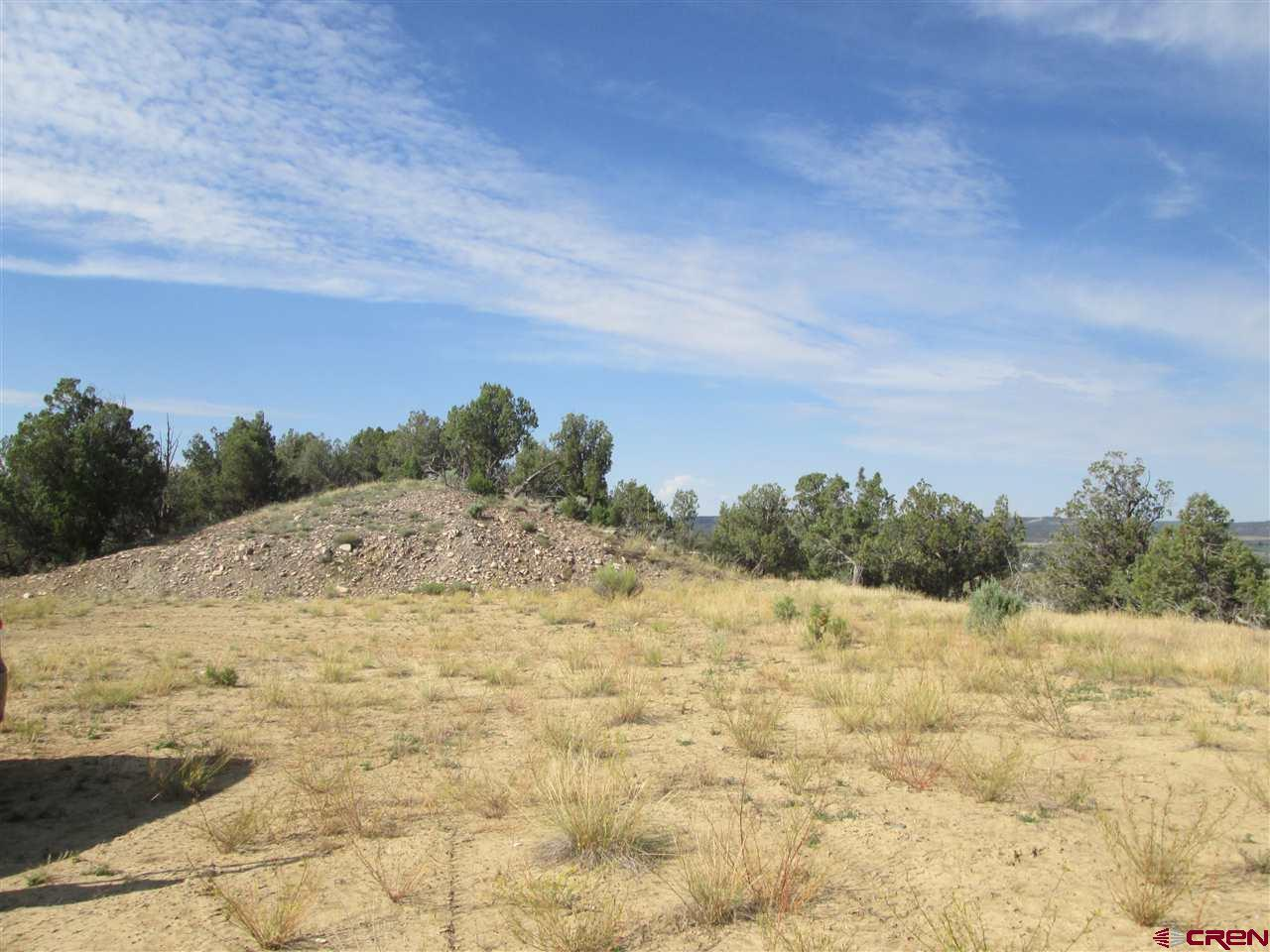 860 Ct. Rd. 973 - Photo 1