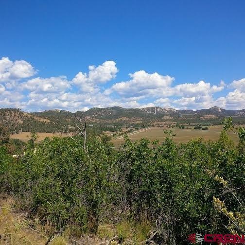 174 Cr 232, Durango, CO 81303 (MLS #758366) :: Durango Mountain Realty