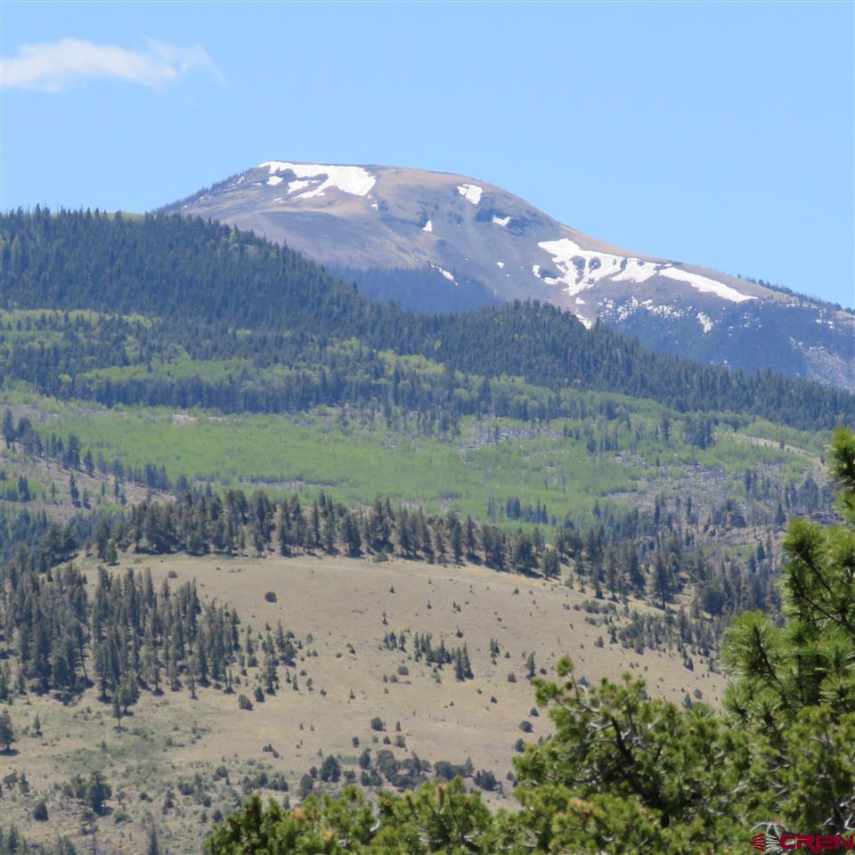 358/370 Pikes Peak Road - Photo 1