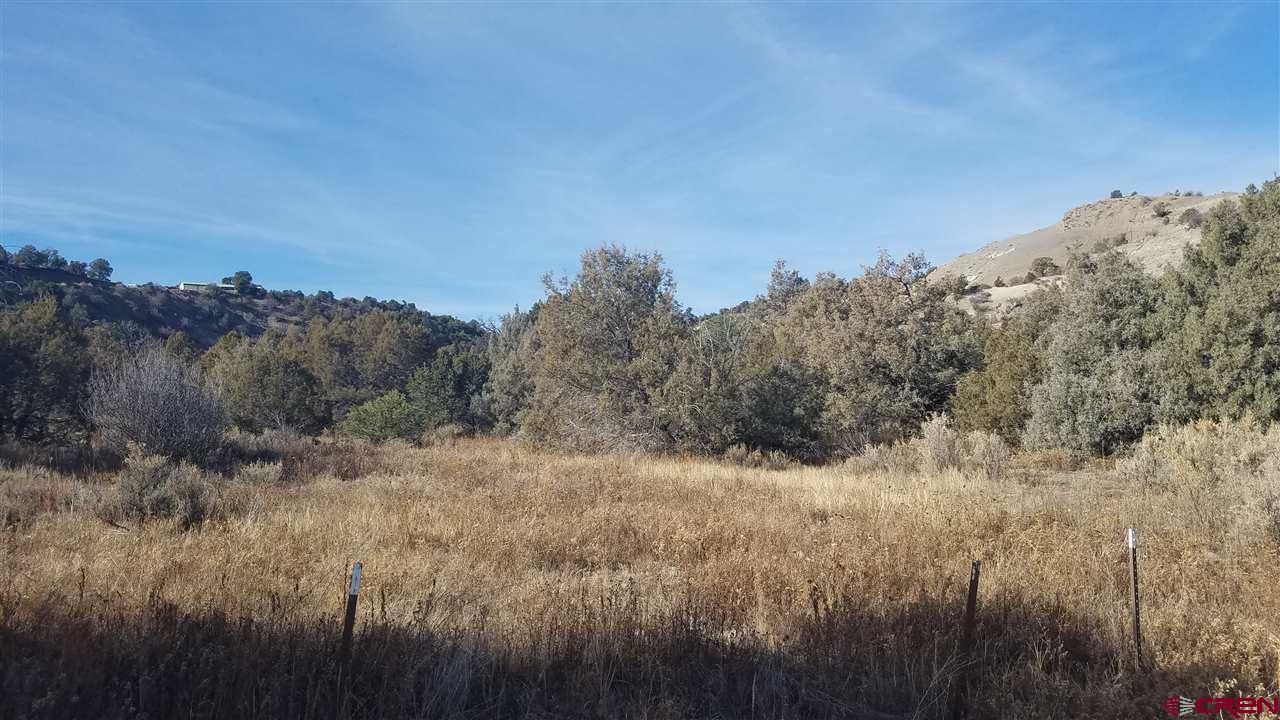 563 La Posta Canyon Road - Photo 1