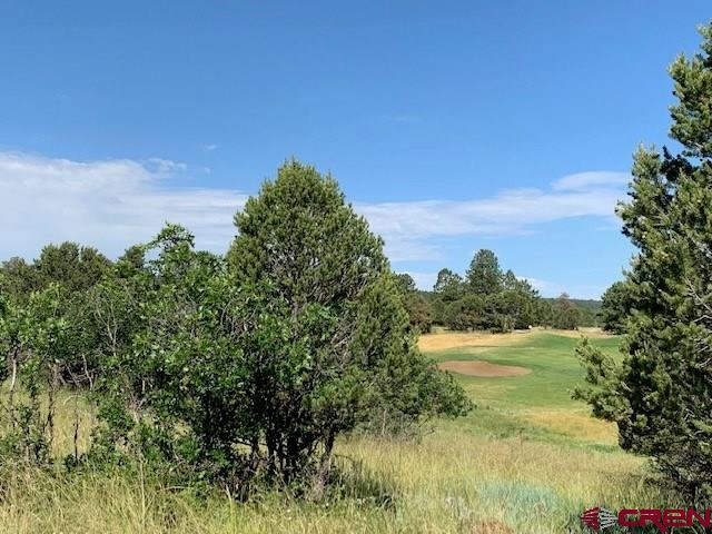 395 Badger Trail - Photo 1