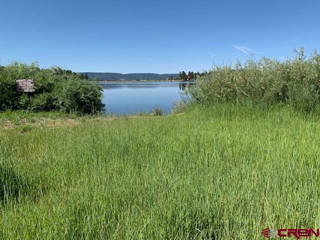 1736 County Road 600, Pagosa Springs, CO 81147 (MLS #760517) :: The Dawn Howe Group   Keller Williams Colorado West Realty