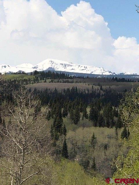 1451 Spruce Road, Cimarron, CO 81220 (MLS #762968) :: The Dawn Howe Group | Keller Williams Colorado West Realty