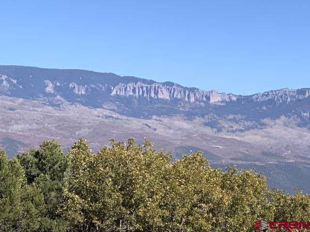 1492 Ponderosa Drive, Ridgway, CO 81432 (MLS #763827) :: The Dawn Howe Group | Keller Williams Colorado West Realty