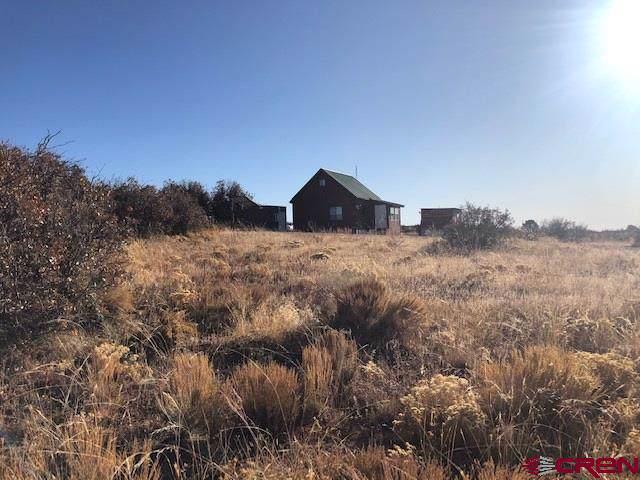 5000 Road 10.9, Dove Creek, CO 81324 (MLS #764690) :: The Dawn Howe Group | Keller Williams Colorado West Realty
