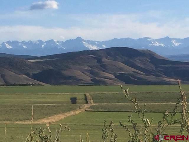 TBD Bostwick Park, Montrose, CO 81403 (MLS #764787) :: The Dawn Howe Group | Keller Williams Colorado West Realty