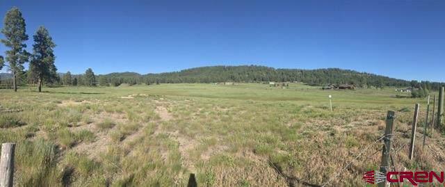 TBD Highway 84, Pagosa Springs, CO 81147 (MLS #765386) :: The Dawn Howe Group   Keller Williams Colorado West Realty