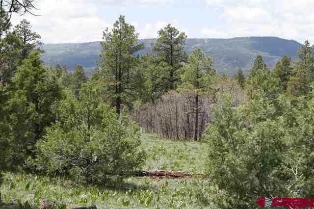 2399 Bull Elk Place, Pagosa Springs, CO 81147 (MLS #765949) :: The Dawn Howe Group | Keller Williams Colorado West Realty