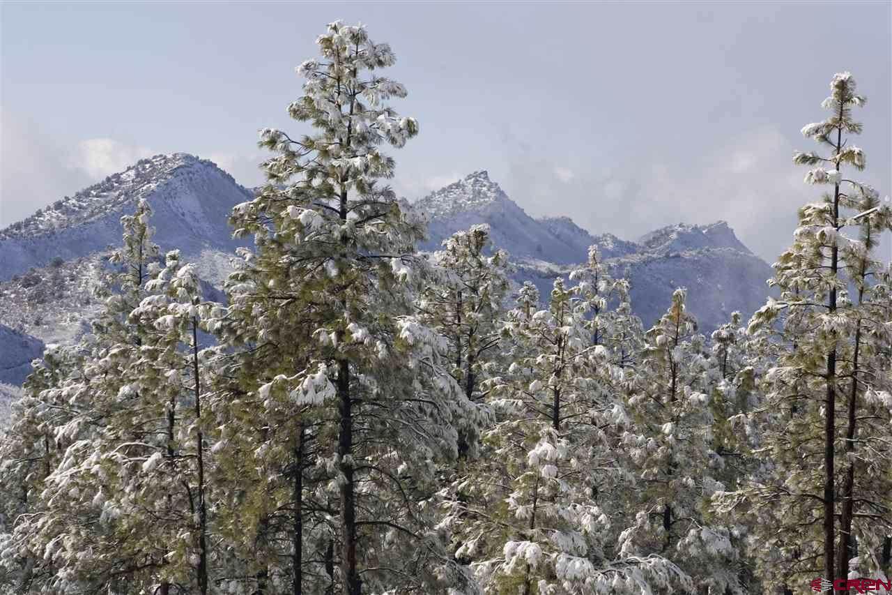 1106 Edgemont Highlands Drive - Photo 1