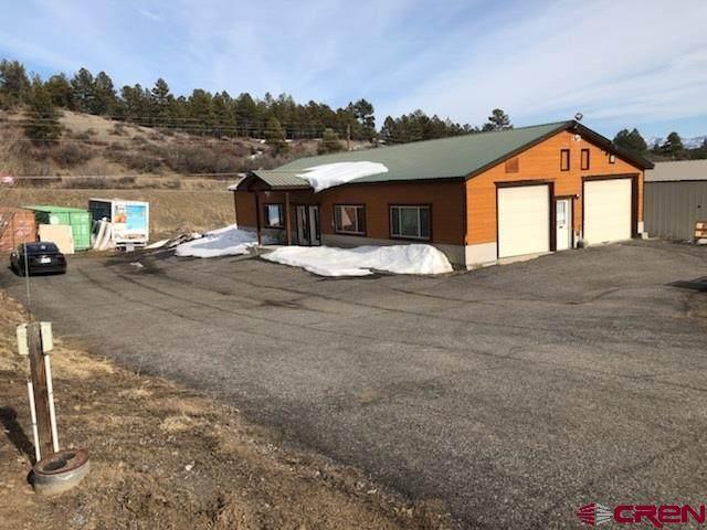 173 Goldmine Drive, Pagosa Springs, CO 81147 (MLS #766749) :: The Dawn Howe Group   Keller Williams Colorado West Realty