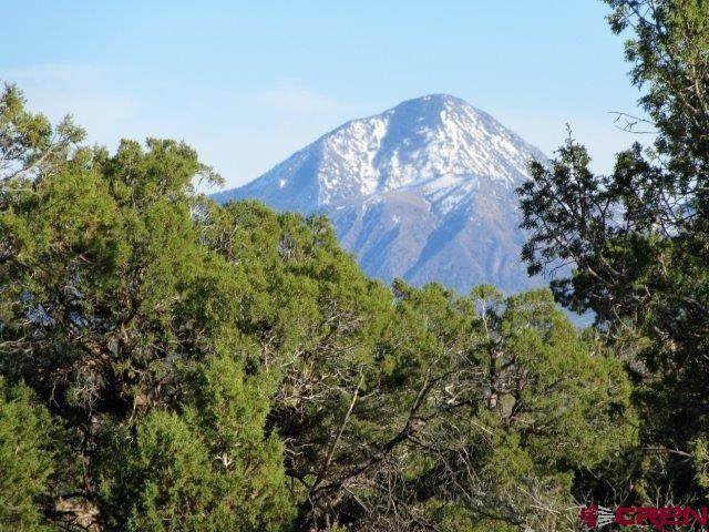 TBD Road 10, Pleasant View, CO 81331 (MLS #767054) :: The Howe Group   Keller Williams Colorado West Realty