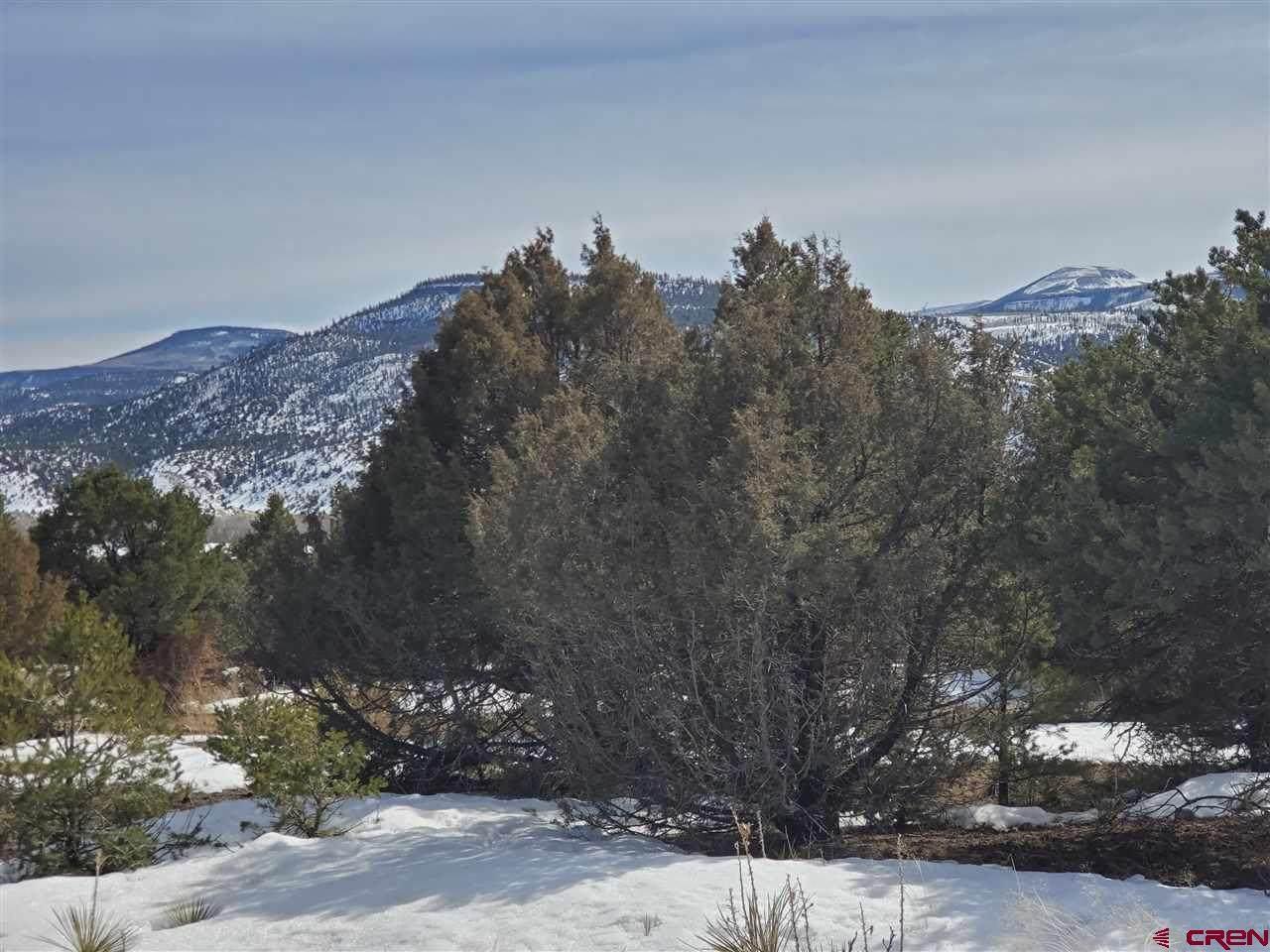 536 Castle Rock Road - Photo 1