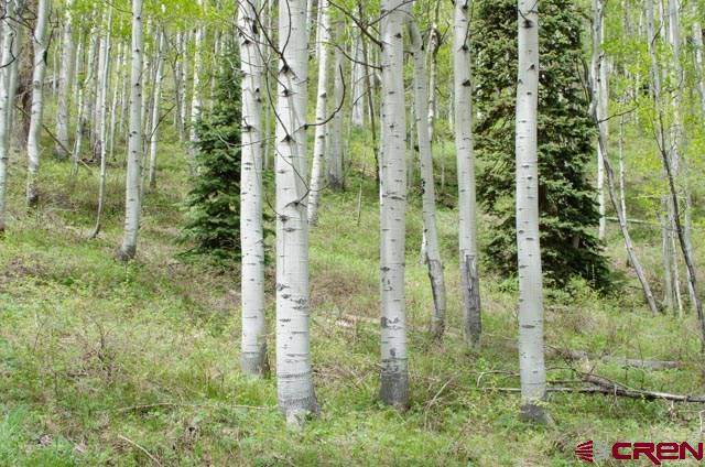 57 Double Diamond (Lot 14) Drive, Durango, CO 81301 (MLS #768287) :: Durango Mountain Realty