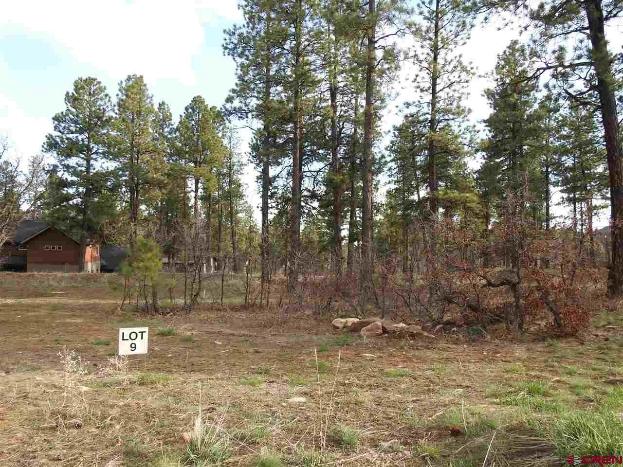 137 Canyon Pines (Lot 9) Place - Photo 1