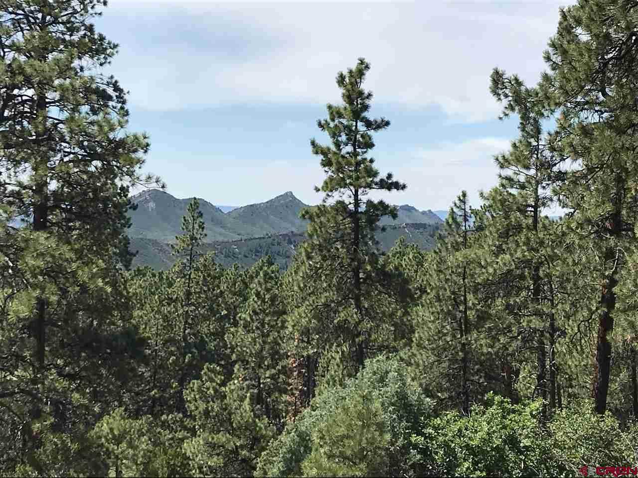 231 Durango Road - Photo 1
