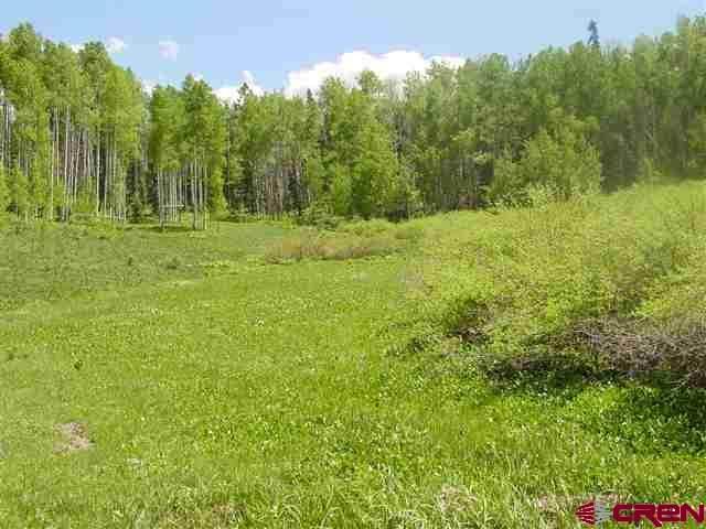 342 & 344 Spruce Glen, Pagosa Springs, CO 81147 (MLS #768675) :: The Dawn Howe Group   Keller Williams Colorado West Realty