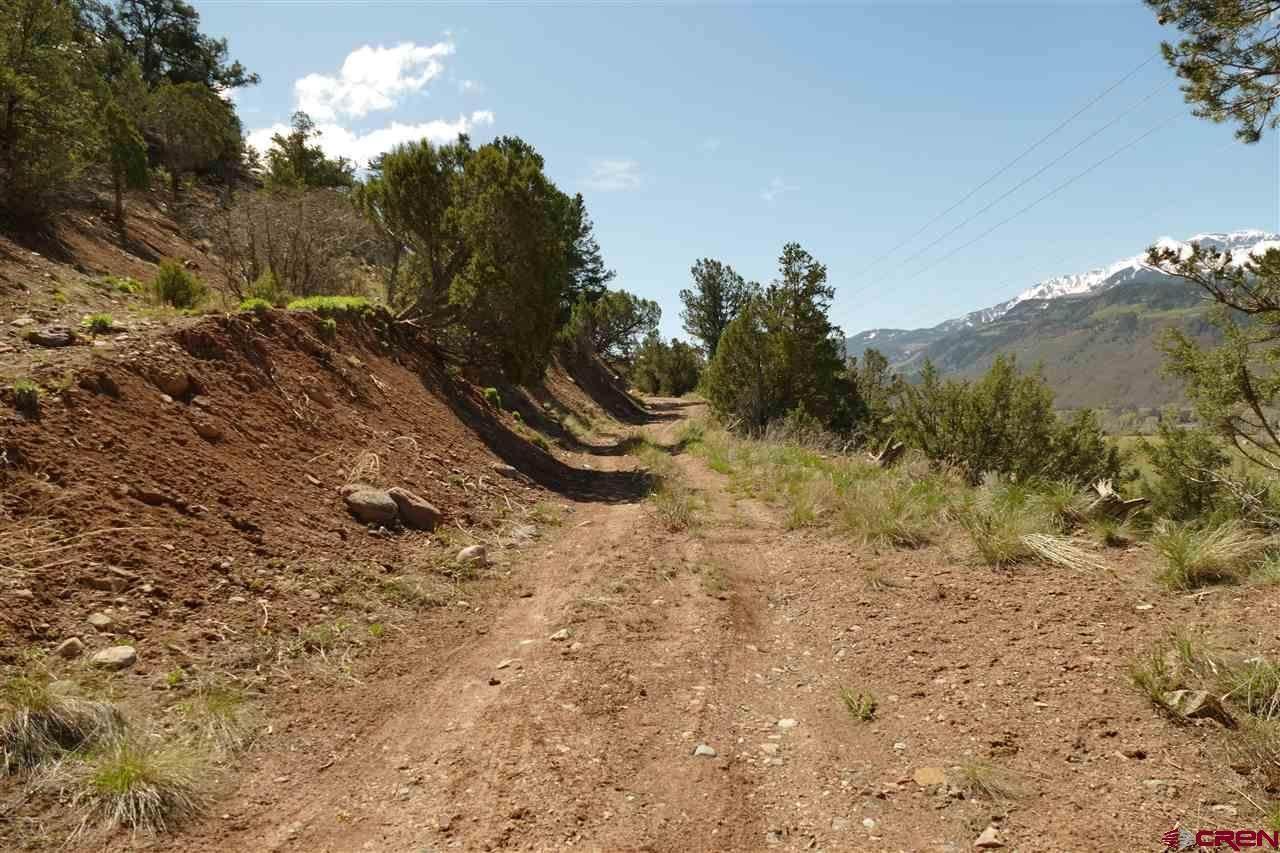 20725 Highway 550 - Photo 1