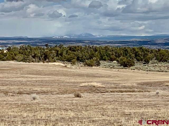 13432 Road 17.9 Loop, (G) Lot #12, Cortez, CO 81321 (MLS #768922) :: The Dawn Howe Group   Keller Williams Colorado West Realty