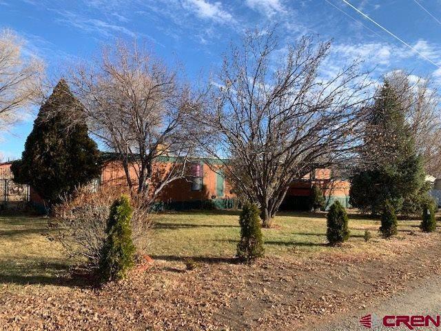 1020 Montelores Avenue, Cortez, CO 81321 (MLS #768953) :: The Dawn Howe Group | Keller Williams Colorado West Realty