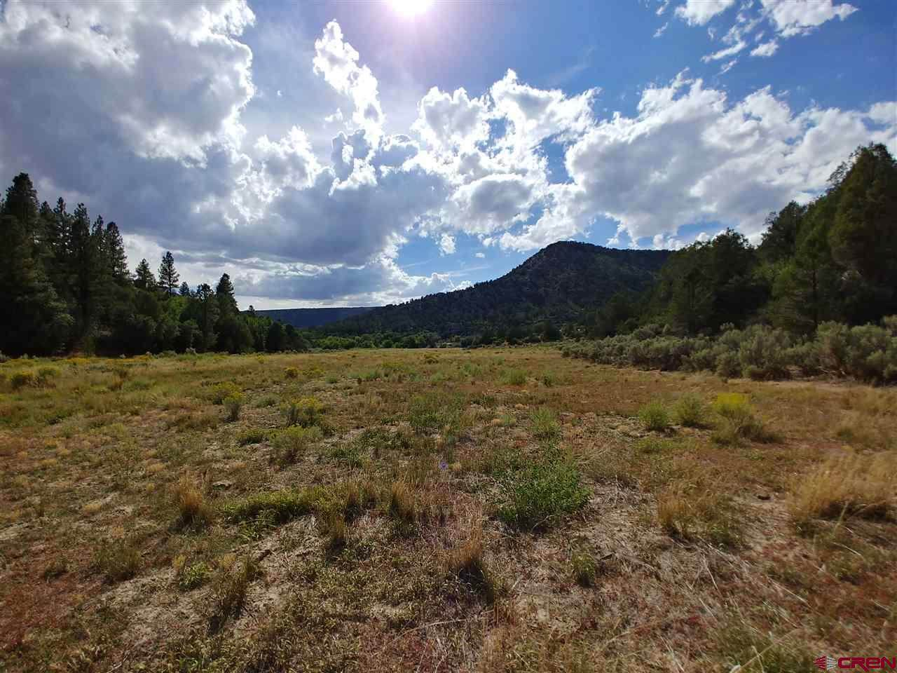 60 Shasta Trail - Photo 1