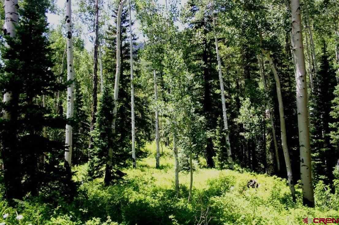 261 Beaver Circle - Photo 1