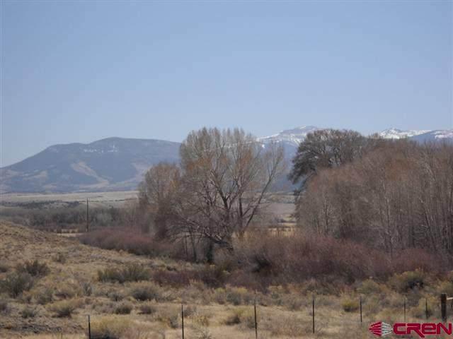 348 Embargo Creek Trail, Del Norte, CO 81154 (MLS #769960) :: The Dawn Howe Group | Keller Williams Colorado West Realty