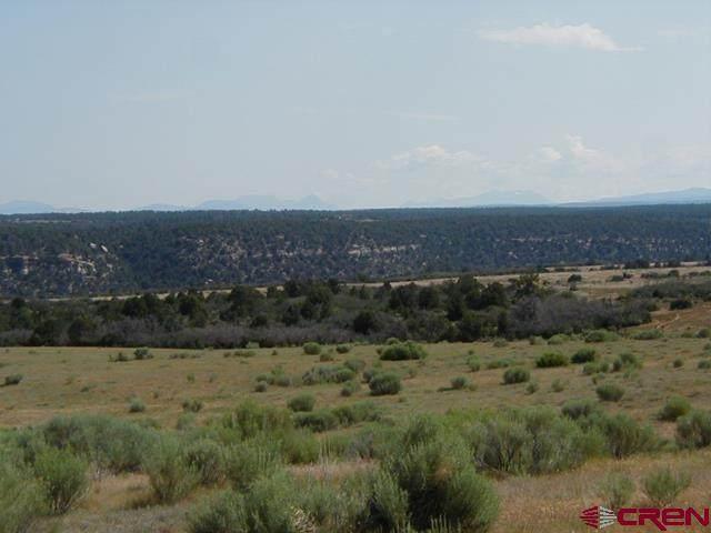 tbd 9K Road, Egnar, CO 81325 (MLS #770306) :: The Dawn Howe Group   Keller Williams Colorado West Realty