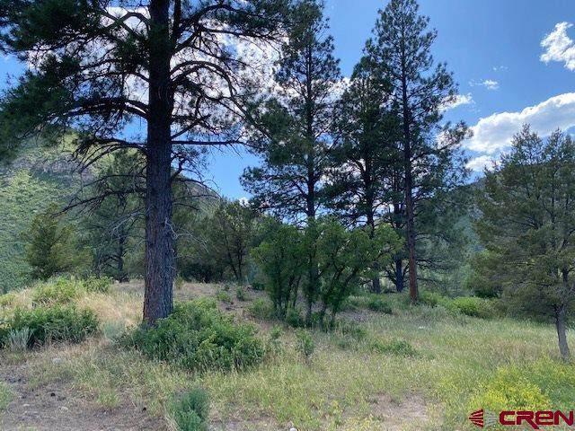 38 Wood Rose Lane, Durango, CO 81301 (MLS #771063) :: The Dawn Howe Group | Keller Williams Colorado West Realty