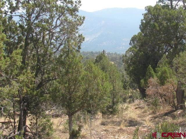 217 Summit Drive, Arboles, CO 81121 (MLS #771255) :: The Dawn Howe Group   Keller Williams Colorado West Realty
