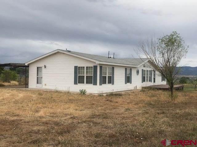 28680 Road N, Dolores, CO 81323 (MLS #772338) :: The Dawn Howe Group | Keller Williams Colorado West Realty