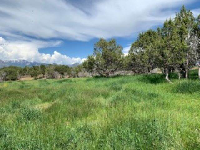 Lot #2 Klaseen Road, Crawford, CO 81415 (MLS #772972) :: The Dawn Howe Group | Keller Williams Colorado West Realty