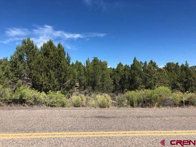 Lot 6-8 and 14 Cty Rd 982, Arboles, CO 81121 (MLS #773229) :: The Dawn Howe Group | Keller Williams Colorado West Realty